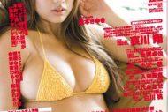 2010年4月号(vol.091) 3月16日発売